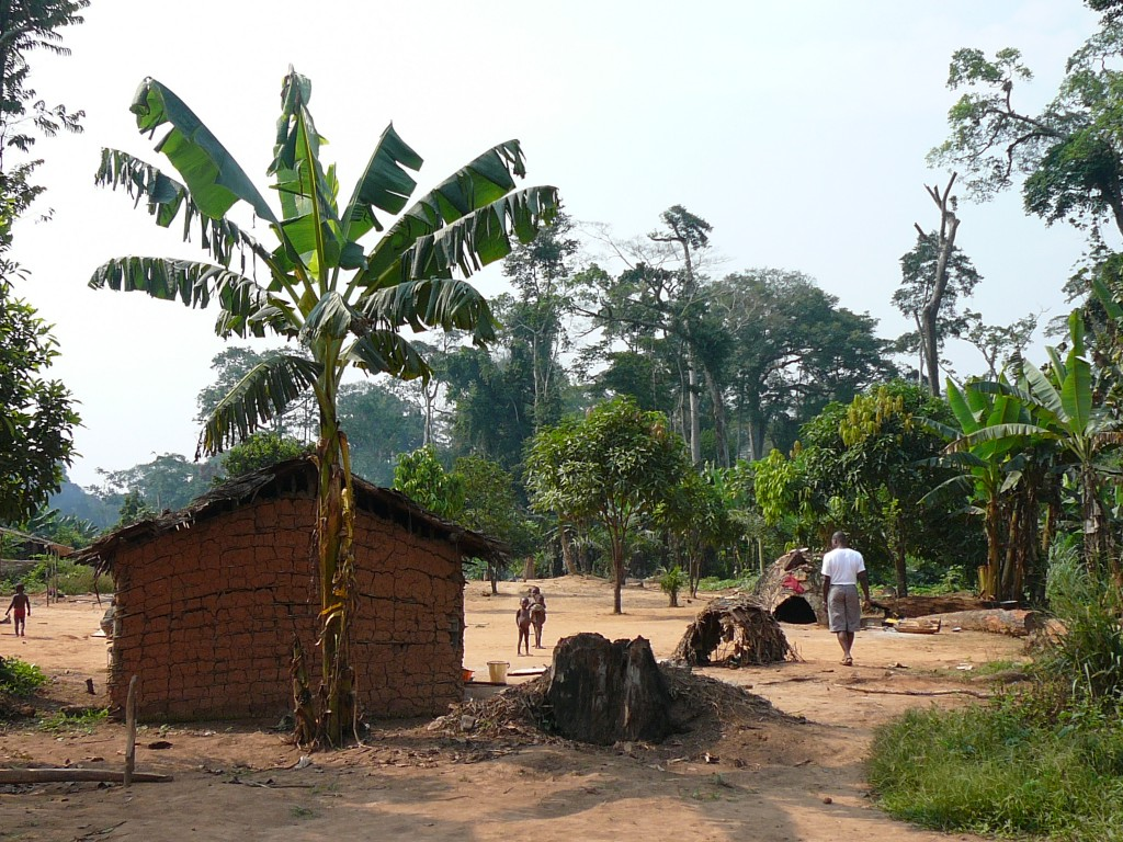 centrafrique 069
