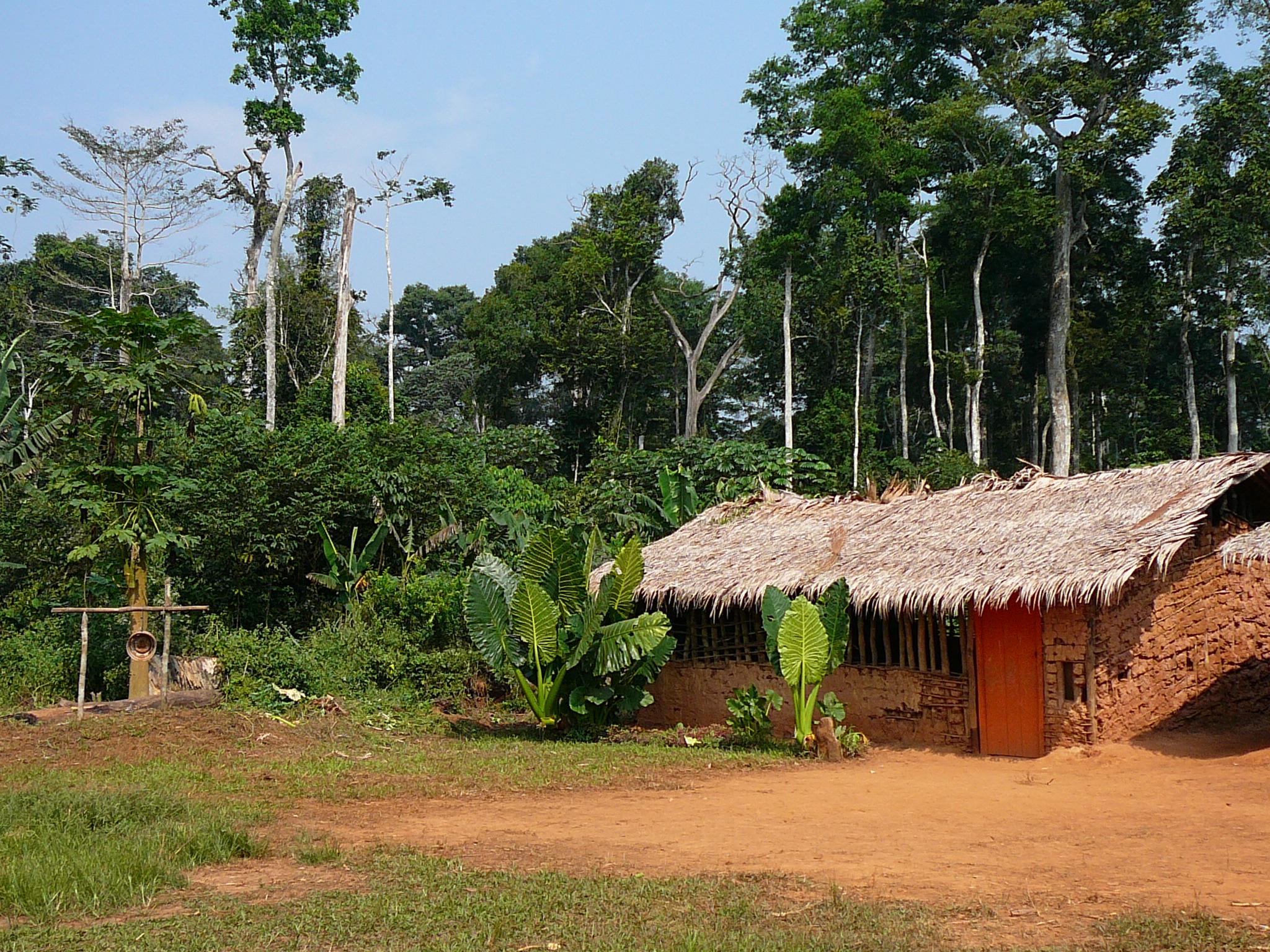 centrafrique 075